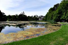 Johnstown Castle Gardens