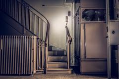 BdF V , escalier ou monte charge ... au choix