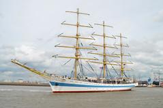 Tall Ship Races (2014)