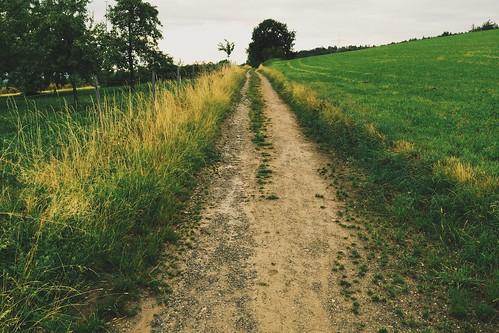 path.  Ravensburg