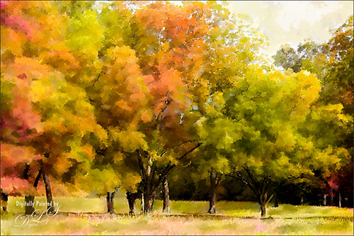 Image of painted fall trees in Jackson, Mississippi