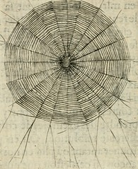 "Image from page 177 of ""Devises heroiques et emblemes"" (1622)"