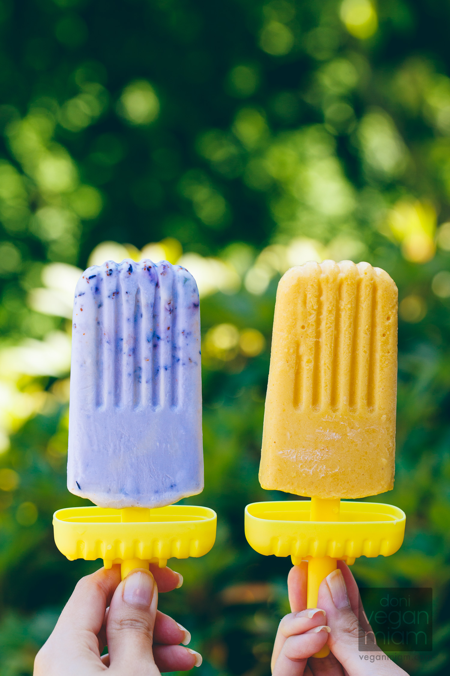 Vegan Smashed Blueberry Pops & Mango Creamsicles