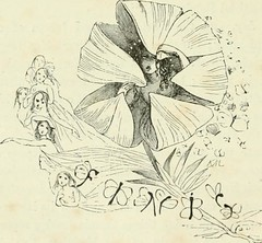 "Image from page 307 of ""Midsummer Eve : a fairy tale of loving and being loved"" (1870)"
