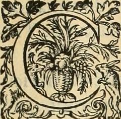 """Image from page 50 of """"De l'origine des bovrgongnons, et antiqvité des estats de Bovrgongne, devx livres : plus, des antiquitez d'Autun, liure 1 : de Chalon, 2 : de Mascon, 3 : de l'abbaye & ville de Tournus, 1"""" (1581)"""