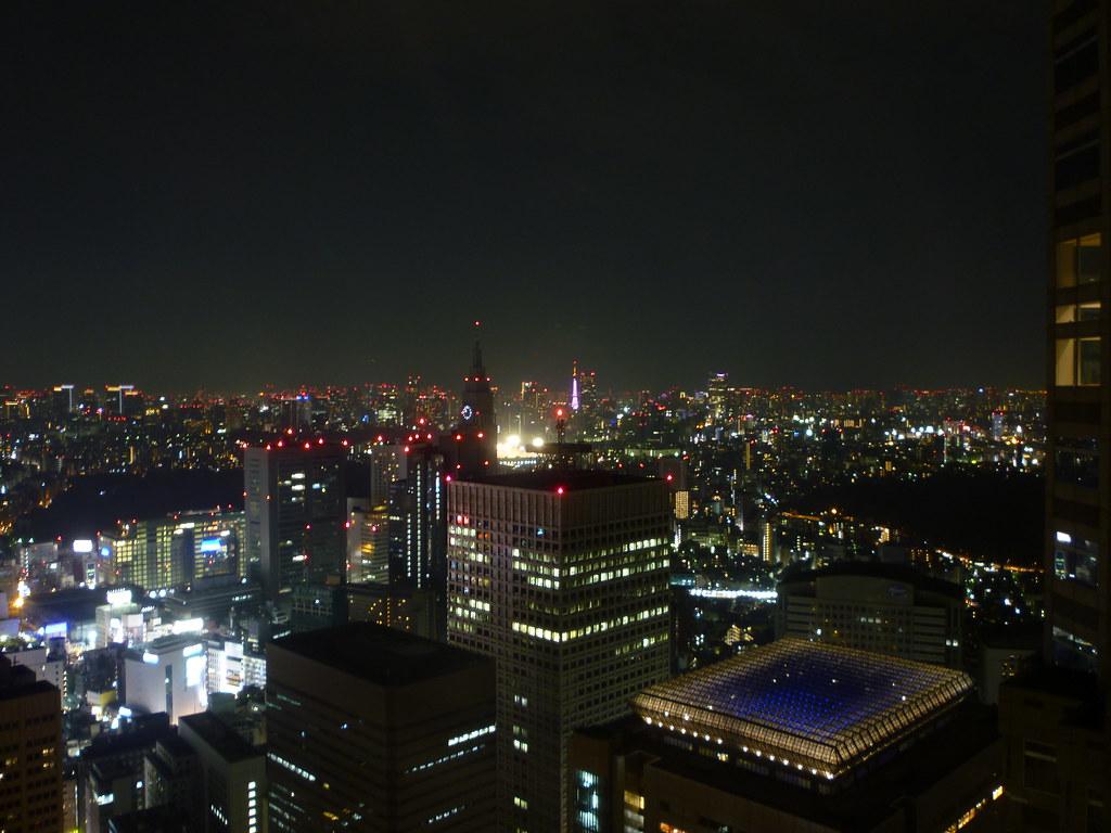 Tokyo Metropolitan Building View - Night