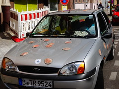 Seashell car.