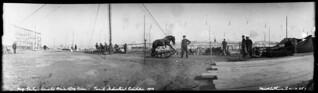 Professor Gentry's trained dog-and pony act at the Toronto Industrial Exhibition / Numéro du poney et du chien dressés du professeur Gentry à l'Exposition industrielle de Toronto