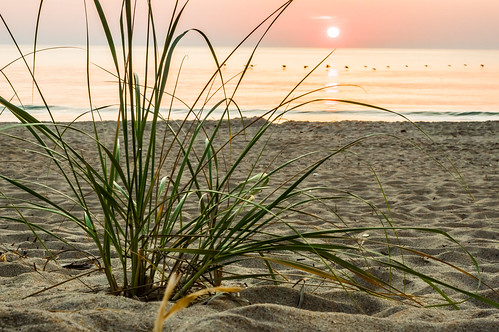 ocean sea sun beach grass sunrise northcarolina killdevilhills