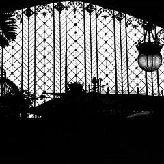 Estación Atocha - Madrid, España.  #igers #arquitectura #arte #arteemfoco #igersphilia #instagramersgallery #igersgallerymadrid #unykaphoto #buildings #España #Madrid #MadridOn #photooftheday