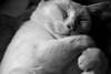 Dreamy hug