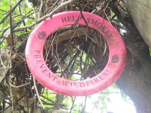 Prevent bayou fires!