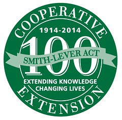 extension-100yrs