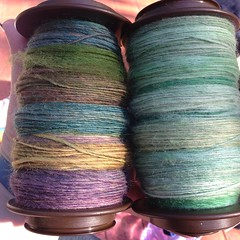 4oz @yarnvszombies Corriedale on the left all spun today and 5oz Polwarth on the right ¾ of which spun today! Going to Chaim ply both of them later this week!