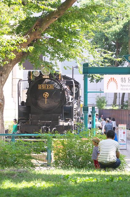 Tokyo Train Story 上野のSL 2014年9月28日