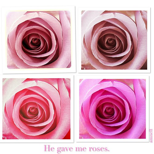 He gave me roses
