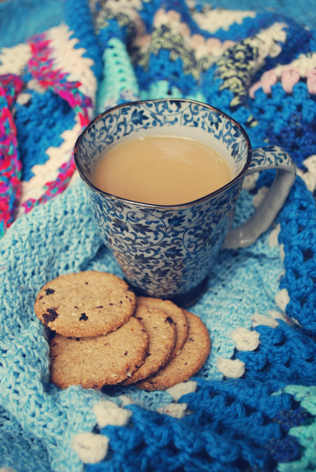 cosy tea and biscuits