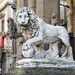 Loggia dei Lanzi. This Marzocco (one of the Medici lions) was sculpted by Flaminio Vacca in 1598.   Lions with a human head under the claws are the most ancient form of the Marzocco or Florentine lion. Loggia dei Lanzi. Florence 2014