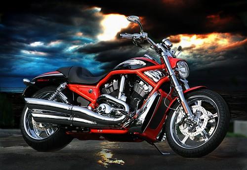 Harley-Davidson Harley Davidson