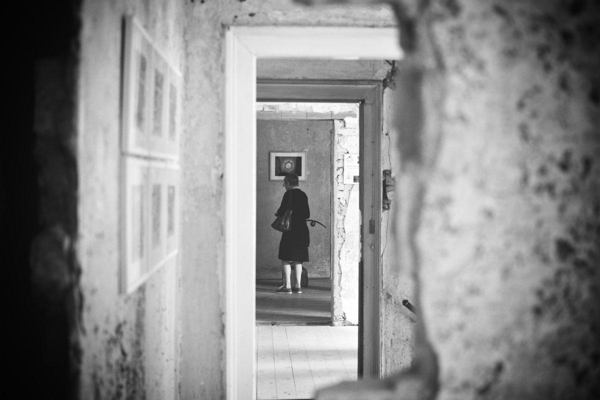 13. Tag der Kunst in Pirna