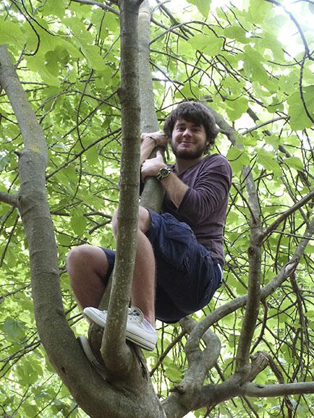 paul dans les arbres