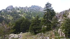 La traversée entre les bergeries de Teghja et de Galghello