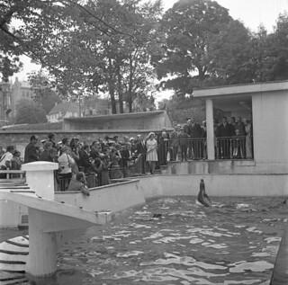 Kongelig besøk ved Akvariet i Bergen  (1969)