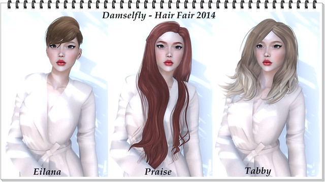 Hair Fair 2014 - Damselfly