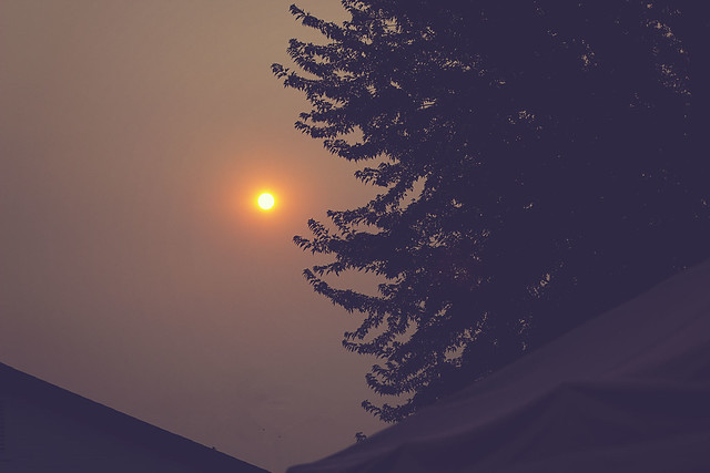 Hazy sunset