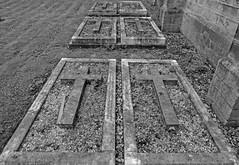 Six Crosses