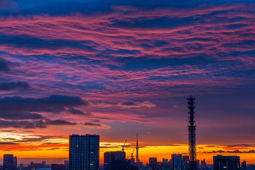 sky japan sunrise dawn tokyo cloudy 東京 空 skytree camera:make=canon exif:make=canon nakajimalassie exif:lens=2470mm exif:aperture=ƒ90 exif:model=canoneos5dmarkiii camera:model=canoneos5dmarkiii exif:isospeed=100 exif:focallength=64mm
