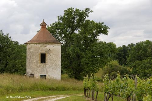 33 Lèves-et-Thoumeyragues - Chariet Pigeonnier