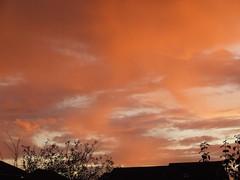 Sunset over Trajan