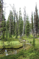 boulder_lake_2014-09-01_082