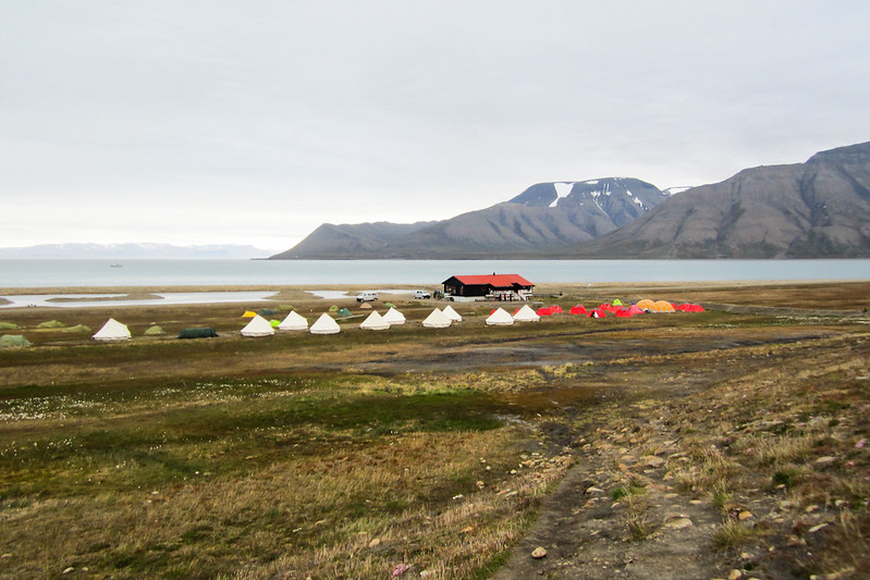RelaxedPace00516_Svalbard100HS1058
