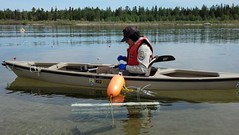 Fish Biologist Mary Henson takes a water sample during a study designed to determine lampricide concentrations in sediment and water at Hog Island Creek
