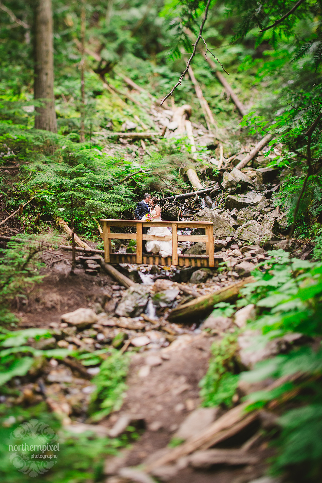 Ancient Forest Elopement Prince George Wedding Photography