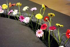 リー・ミンウェイ《ひろがる花園》