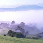 070812 Sonntag bei Nebel