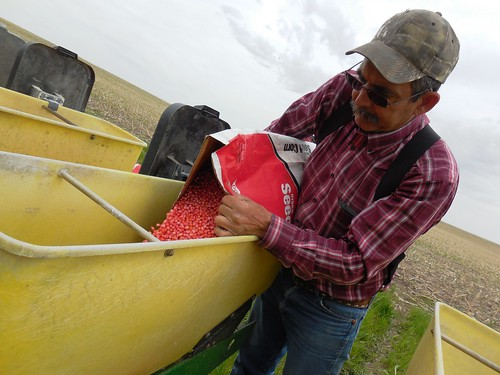 Dad filling up the planter with corn