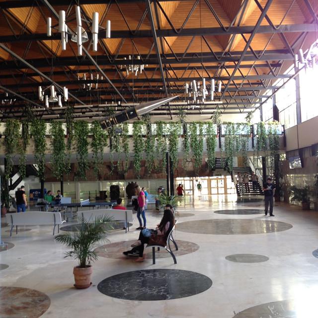 格拉纳达大学
