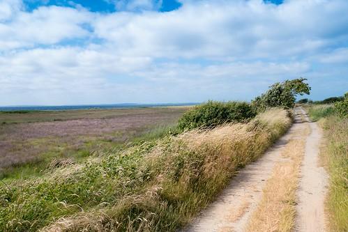 Rural Landscape - Baltic Sea