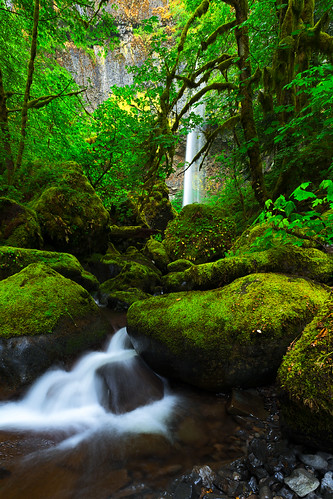 longexposure green nature water oregon portland landscape waterfalls pacificnorthwest verdant lush columbiarivergorge elowahfalls