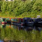 2014 - 07 - 13 - EOS 600D - Llangollen Marina - Llangollen Canal - 001