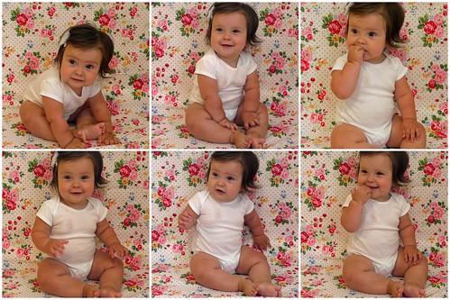 Nine Months Collage