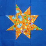 dotty orange star
