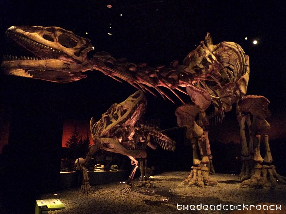 artscience museum, dawn to extinction, dinosaurs, exhibition, marina bay sands, mbs, singapore,fasolasuchus,lessemsaurus