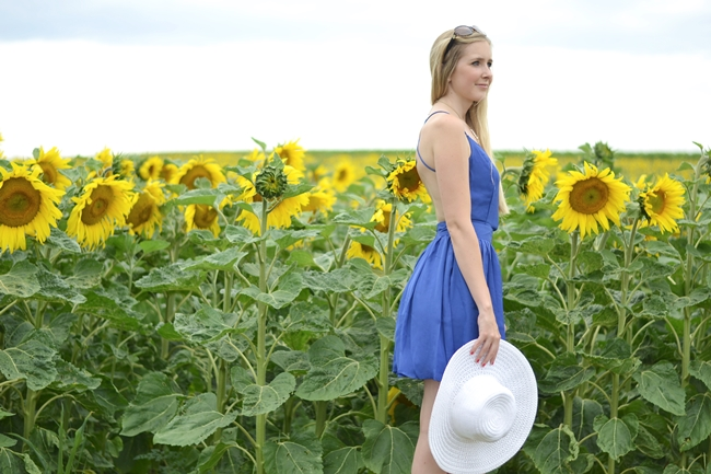 Outfit field with sunflowers (6)