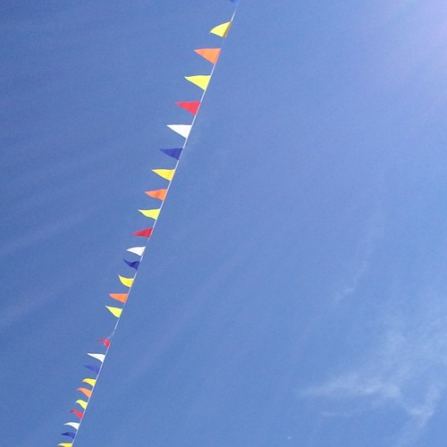 Bunting and blue skies today!