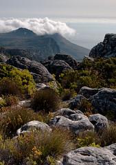 Top table mountain portrait view